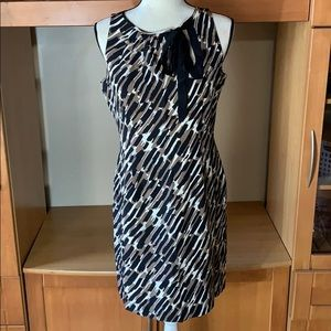 Ann Taylor 100% Silk Dress Size 6
